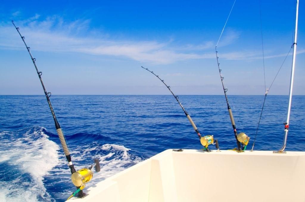 Best Fishing Charters in Australia