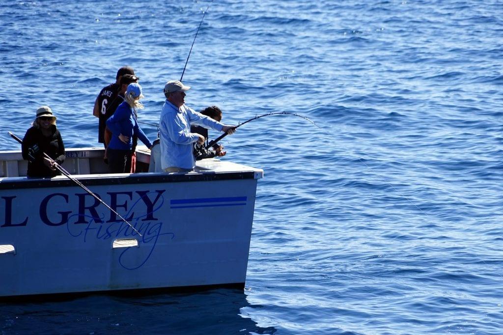Best Deep-Sea Fishing in Gold Coast